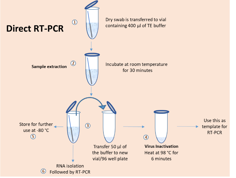 CSIR-CCMB's Dry Swab direct RT-PCR method for Coronavirus detection receives ICMR approval