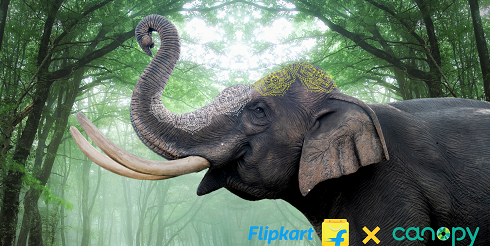 Flipkart and Myntra Join Hands with Canopy to Advance Sustainability Efforts and Conserve Forests