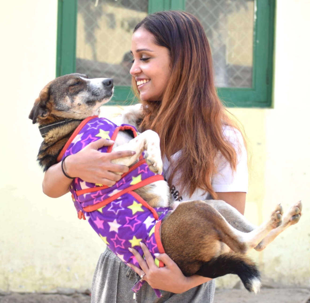Kannan Animal Welfare takes the route of crowdfunding